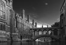 Cambridge sighs